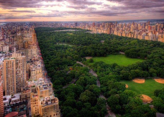 Central-Park-New-York-City