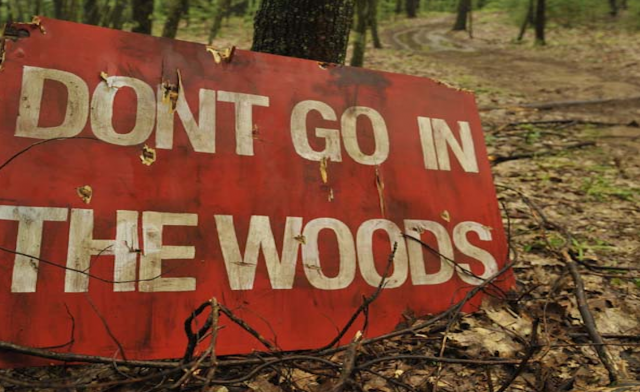 dont-go-in-the-woods-banner